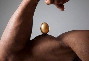 muscle-building-eggs.jpg