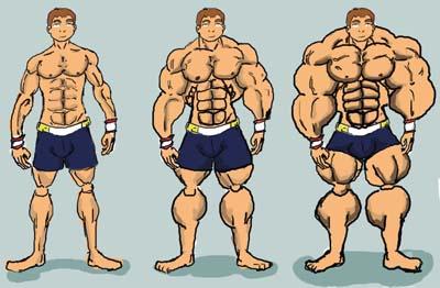 muskulen20rast.jpg